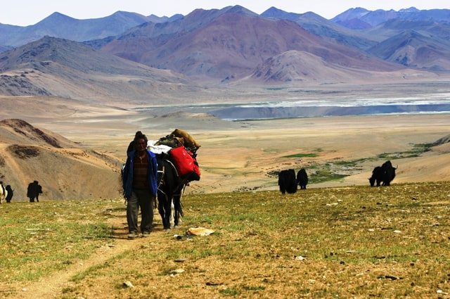RUMTSE TO KIBER TREK
