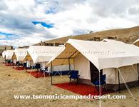 tsomoriri-camp
