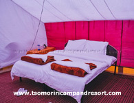 tsomoriri-camp-double-beded-tent